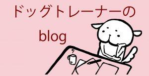 犬の出張トレーニングinuccoドッグトレーナーブログバナー