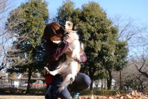 コイケルホンド 祖師谷公園 抱っこ犬