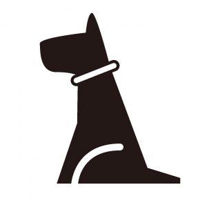 犬のおすわり