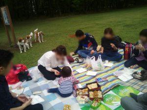 都立野川公園 コイケルホンディエ 犬の散歩