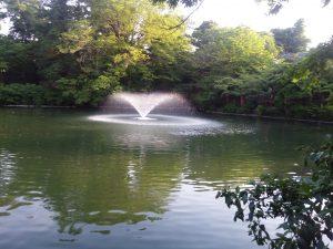 井の頭公園 噴水